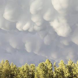 Storm Clouds by JK Dooley