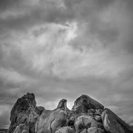 Joseph Smith - Storm Eagle