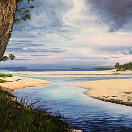 Anne Gardner - Storm over Moona Moona Creek