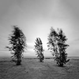Stelios Kleanthous - Stormy Day