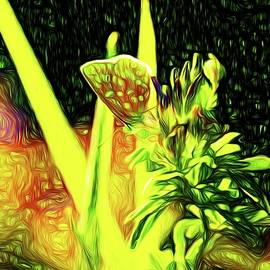 Story of Meadow by Jaroslav Buna