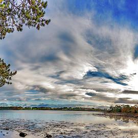 Strangford Autumn