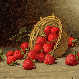 Strawberries - Barton Stone Hays