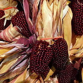 Strawberry Corn by Denise Mazzocco
