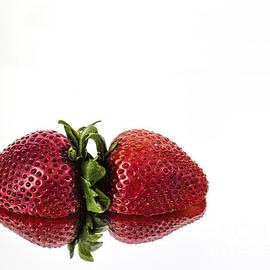 Shirley Mangini - Strawberry Reflections