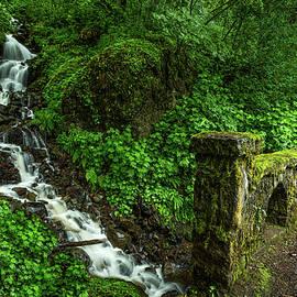 Stream Down The Hillside by Rick Strobaugh