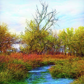 Stream In Autumn Light by Joel Bruce Wallach