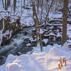Angelo Marcialis - Stream In Winter Morning Light