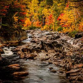 Jeff Folger - Stream meanders the fall foliage