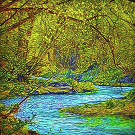 Joel Bruce Wallach - Streaming Forest Dream