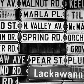 Colleen Kammerer - Street Names