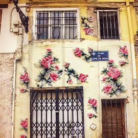 Streets of Valencia  - Carol Japp