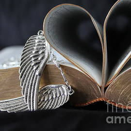 Strength From Wings and Biblical Love by Lkb Art And Photography