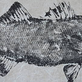 Jeffrey Canha - Striped Bass on Bright White Thai Unryu / Mulberry Paper