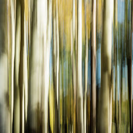 Study In Abstract No. 380, Yellowstone by Ann Skelton