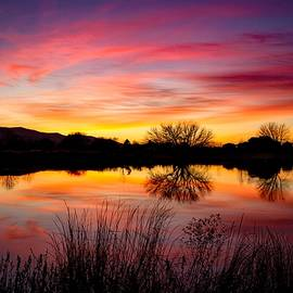 Lynn Hopwood - Stunning pink sunset