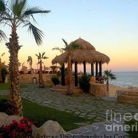 Stunning Sunset Gazebo in Cabo by Charlene Cox