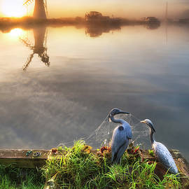 Matthew Gibson - Stunning unrise landscape over foggy River Thurne looking toward
