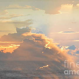 Thomas Carroll - Sun storm