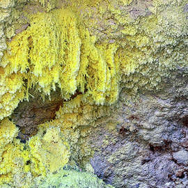 Sulphur by Nicholas Blackwell