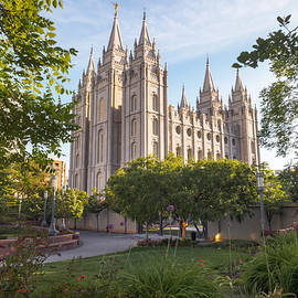 Summer At Temple Square by Emily Dickey