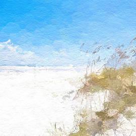 Anthony Fishburne - Summer beach dunes