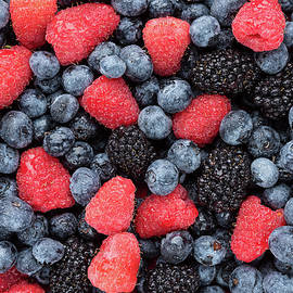 Steve Gadomski - Summer Berries