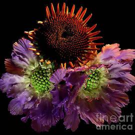 Summer Flowers # 1. by Alexander Vinogradov