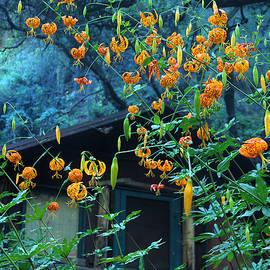 Viktor Savchenko - Summer Flowers On Gabrielino Trail