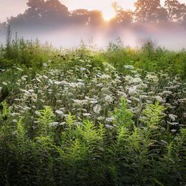 Summer Fog by Bill Wakeley