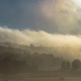 Jennifer Myers - Summer fog