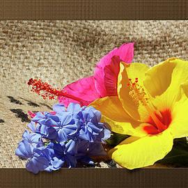 Phyllis Denton - Summer Garden Flowers