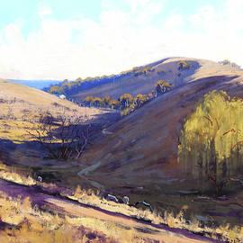 Graham Gercken - Summer grasses Kanimbla, Australia