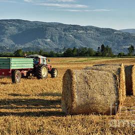 Norman Gabitzsch - Summer Harvest