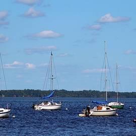 Cynthia Guinn - Summer On The Lake