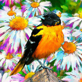 Summer Oriole by Tina LeCour