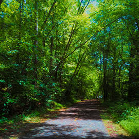 Summer Path by Daniel Eskridge