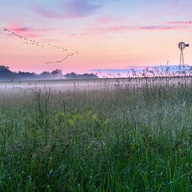 Summer Sunrise 2015 by Bill Wakeley