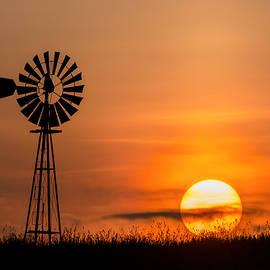 Bill Wakeley - Summer Sun