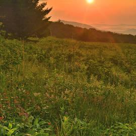 Summer Sunrise by Stephen  Vecchiotti