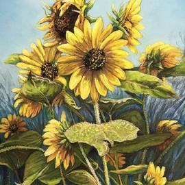 Wendy Koehrsen - Summertime Sunflowers