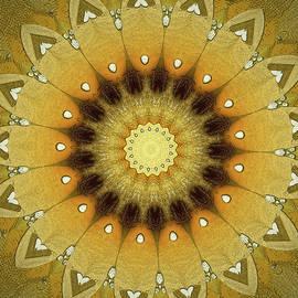 Sun Kaleidoscope by Wim Lanclus