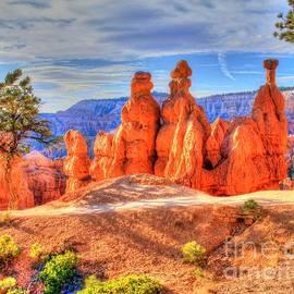 Charlene Cox - Sun kissed Bryce Canyon Utah