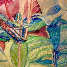 Sun Salutations to a Grasshopper  by Kimberlee Baxter
