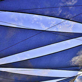 Sun Shield Abstract by Norma Brandsberg