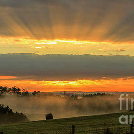 Reid Callaway - Sunbeams Banner Landscape Sunrise Art