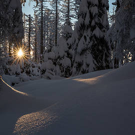 Andreas Levi - Sunburst in winter fairytale forest Harz