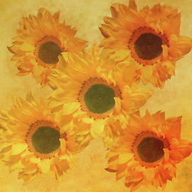 Sunflower Creation 2 by Johanna Hurmerinta