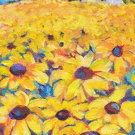 Sunflower Field by Peggy Johnson by Peggy Johnson