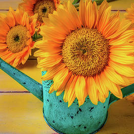 Sunflower In Green Watering Can - Garry Gay